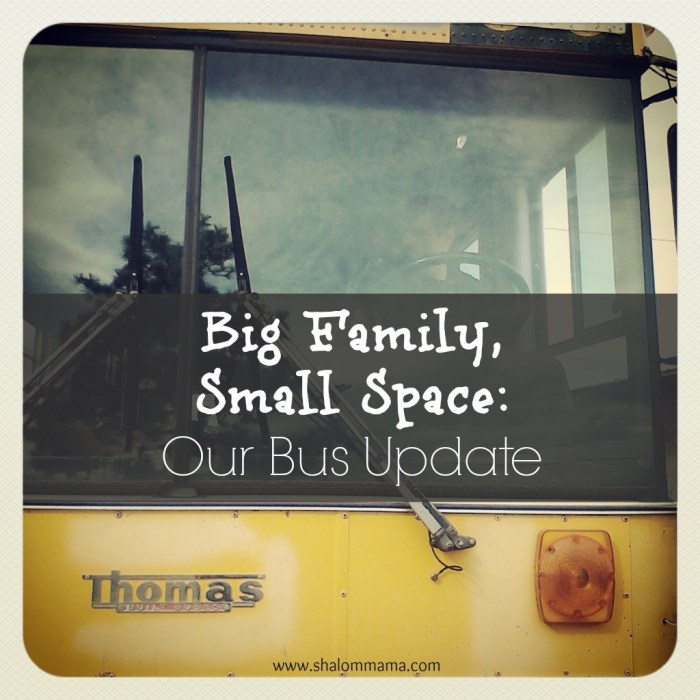 Big Family, Small Space-Our School Bus Update