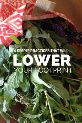 4 Simple Practices that Will Lower Your Footprint