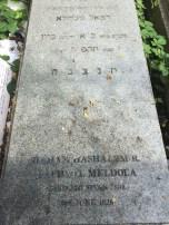 Haham Raphael Meldola