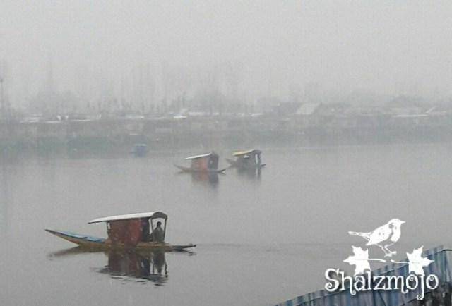 -shikaras-gulshan-books-bookstore-kashmir-srinagar-residency-road-dal-lake-nehru-park-urdu-islam-rumi-