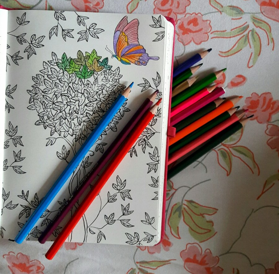 Matrikas-journal-diary-pink-butterfly-pages-writing-creative-dreams-thoughts-share-product-review-stationery-junkie-heart-adult-colouring-pages