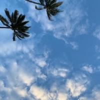 ハワイライフ後半、もう半分⁈まだ半分⁈