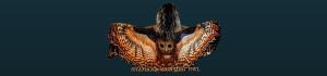 Shamama Hunting Owl