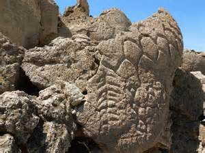Petroglyphs near Lake Winnemucca have been carbon dated to be between 14,000 to 10,500 yrs old.