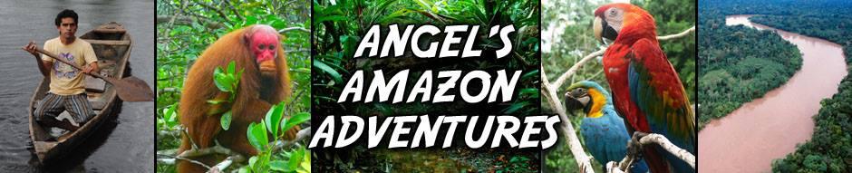 Angels Amazon Adventures Logo