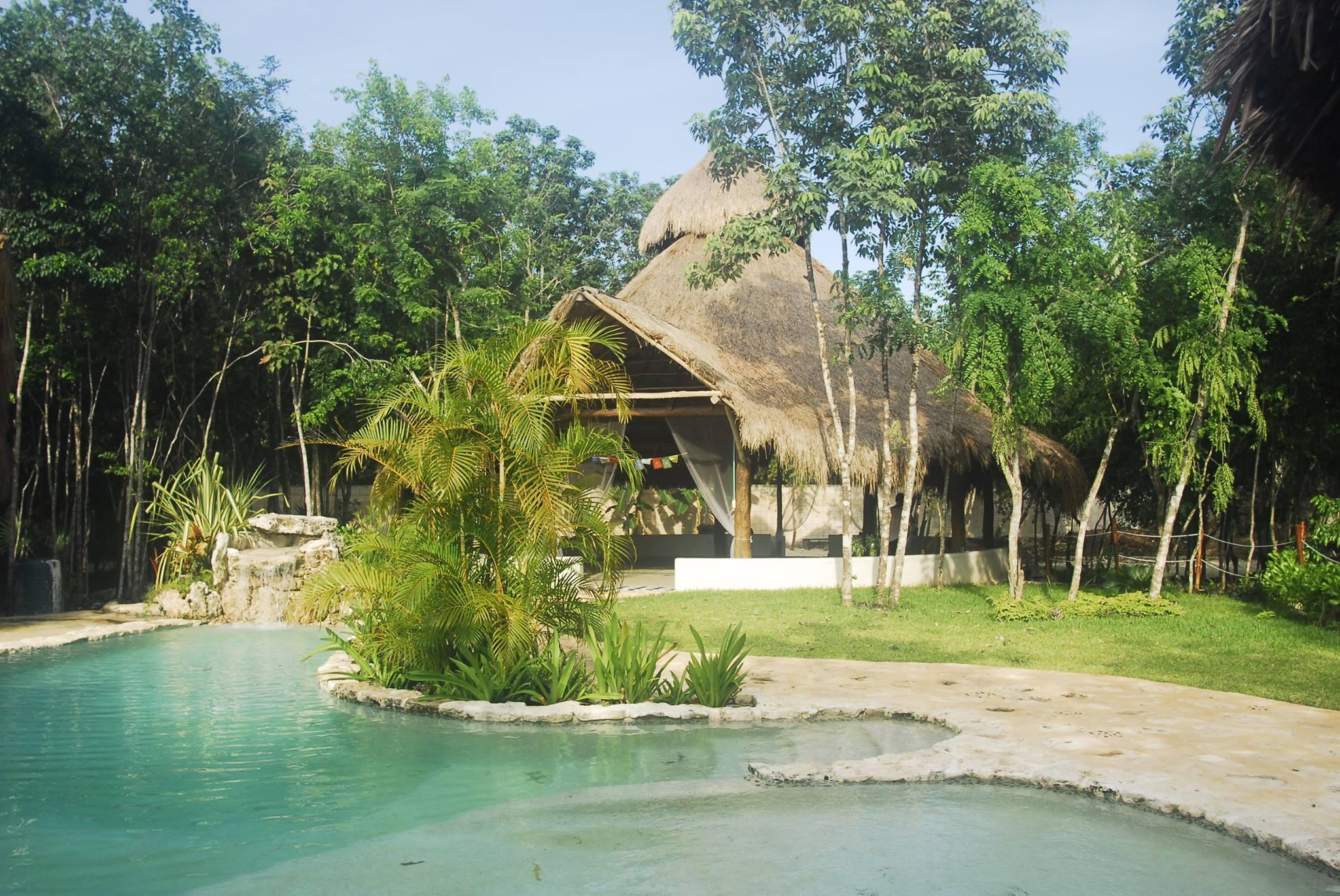Bluestone Ayahuasca Retreats