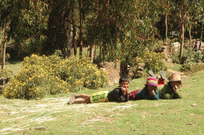 Ayahuasca Prajna