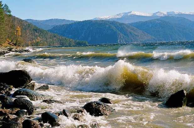 Золотые горы Алтая.
