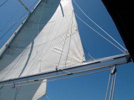 Mainsail of S/V Blue Ice