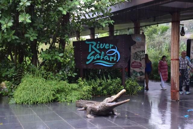 singapore-zoo-2