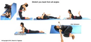 Stretch your back from all angles 1 x111