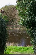 Der Fluss Inagh | The Inagh River