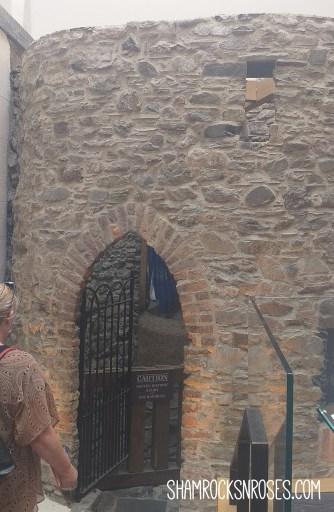Waterford Treasures Medieval Museum