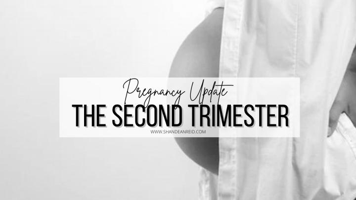 Pregnancy Update : Second Trimester