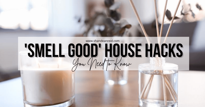 5 'Smell Good House' Hacks You Need to Know