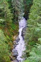 View from the Carbonado Bridge of the Carbon River.