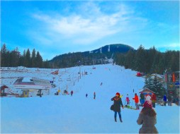 Blackcomb Run
