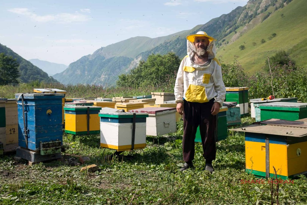 A bee keeper mans his apiary in the remote Galanchozh mountains of Chechnya, Russia.