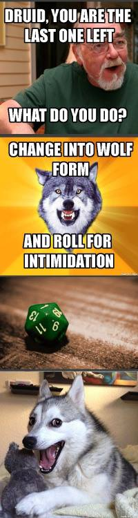 d&d meme druid wolf form