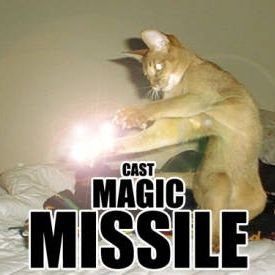 d&d meme cast magic missle cat
