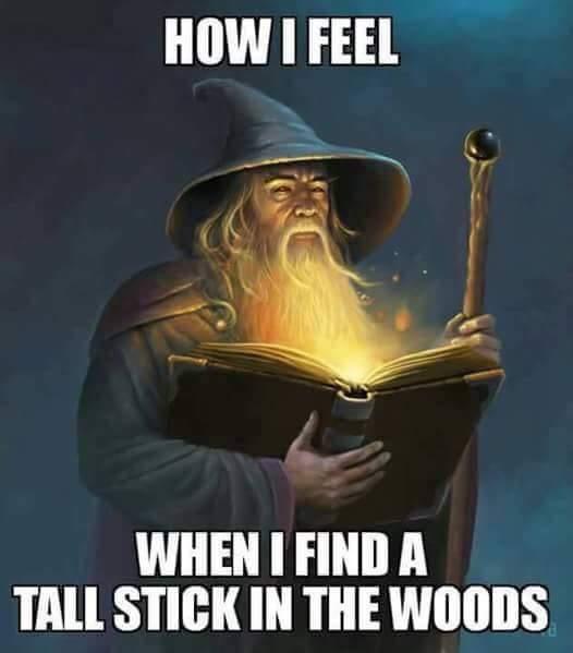 d&d meme how I feel tall stick in the woods