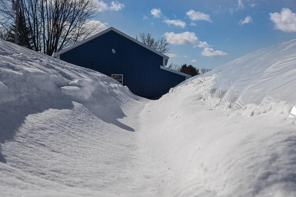 Shaner Avenue Nursery Winter 20-21 Snow