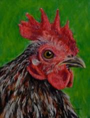Rooster artwork