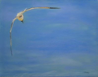 Soaring - AVAILABLE