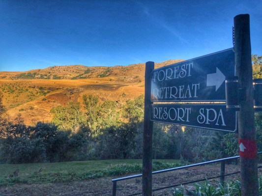 This way to Forest Retreat Spa
