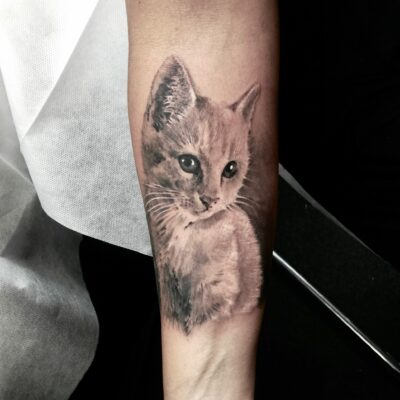 zhuo dan ting tattoo work cat tattoo卓丹婷纹身作品 猫咪纹身 1
