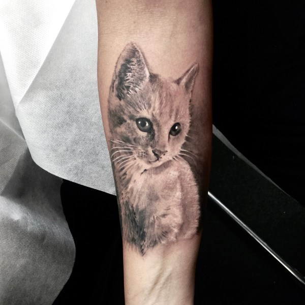Zhuo-Dan-Ting-Tattoo-work-cat-tattoo卓丹婷纹身作品-猫咪纹身