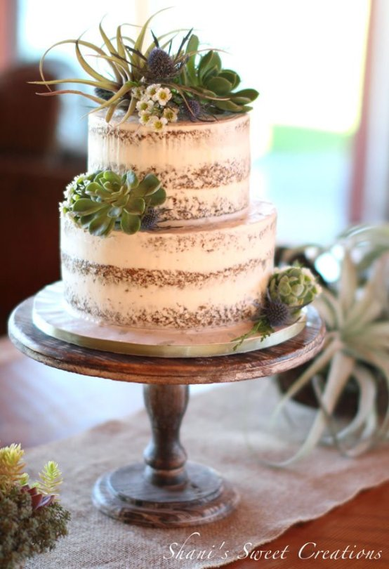 rustic semi-naked cake with succulents