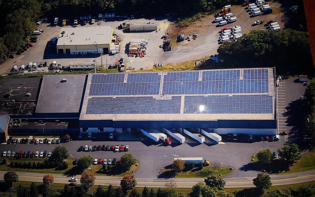 Shank's Uses Solar Paneling for Last 14 Years to Reduce Carbon Footprint