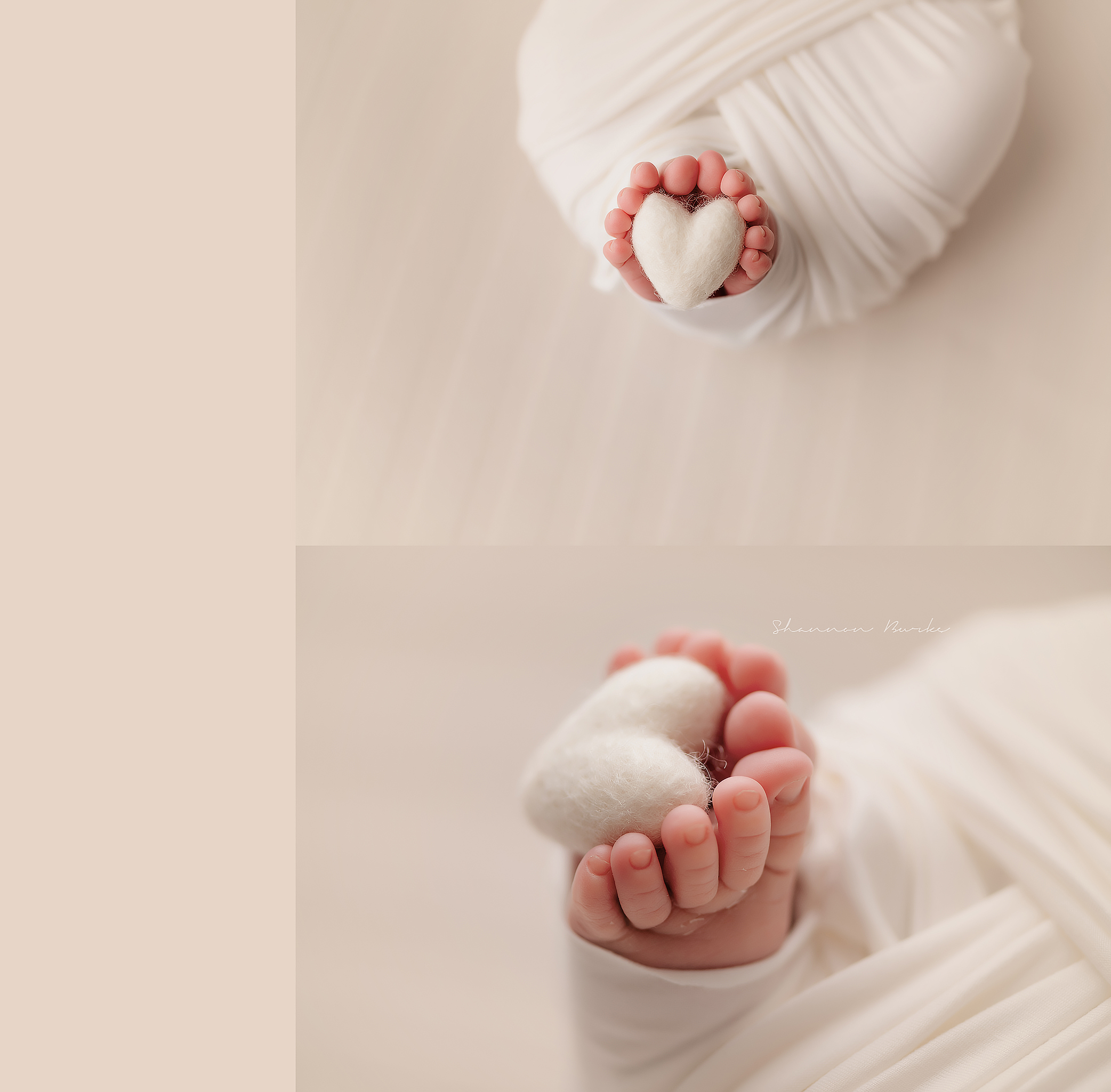 Anthem Newborn Photographer
