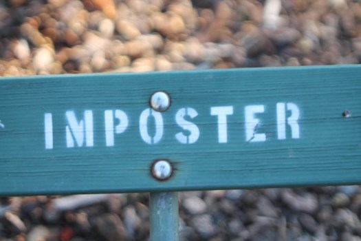 Imposter by Robin Zebrowski | https://www.flickr.com/photos/firepile/15576354231