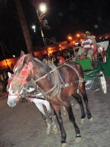 Marrakesh buggy