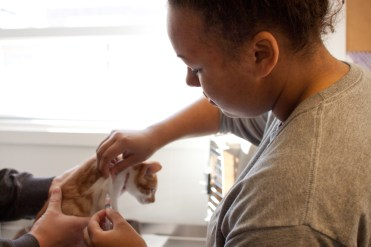 Feline Supervisor Autumn Scott at the Mt. Pleasant Humane Animal Treatment Society, gives a shot to a kitten that is being fostered by Central Michigan University senior, Evan Ford on Wednesday, Oct. 2, 2013.