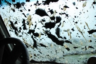 Mud splattered on the windshield in Farwell, Mich. on Friday Oct. 4, 2013.