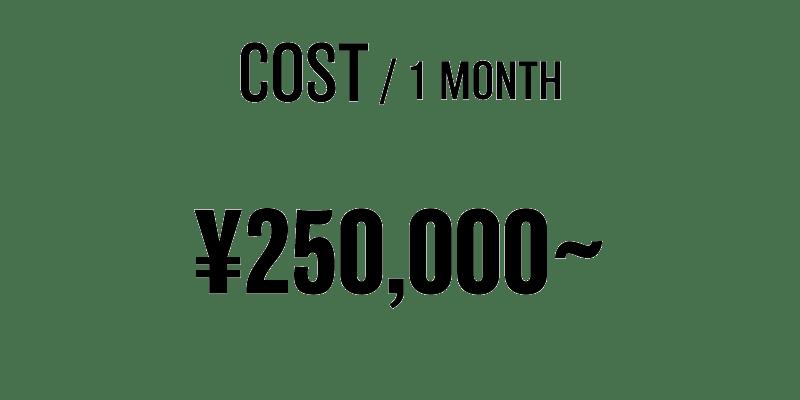 料金1ヶ月250000円〜