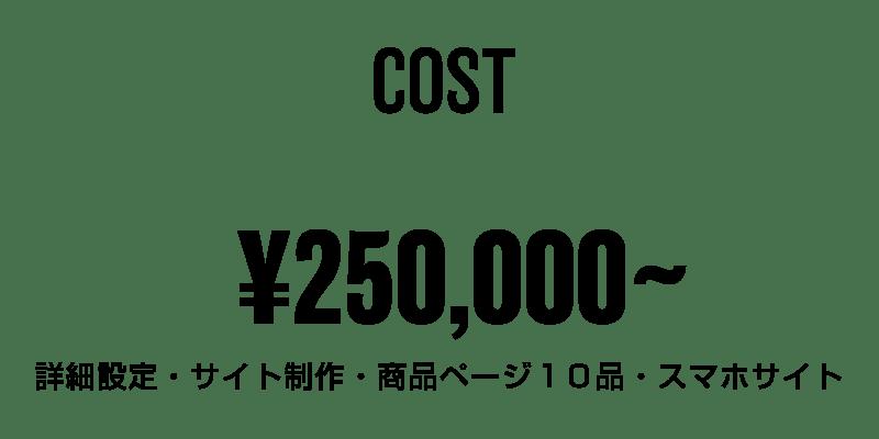 料金250000円〜
