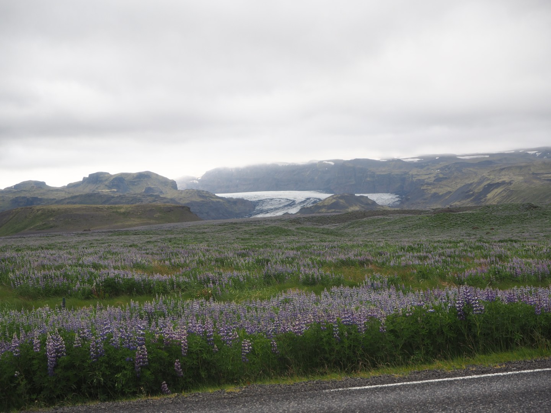 iceland photo diary 5