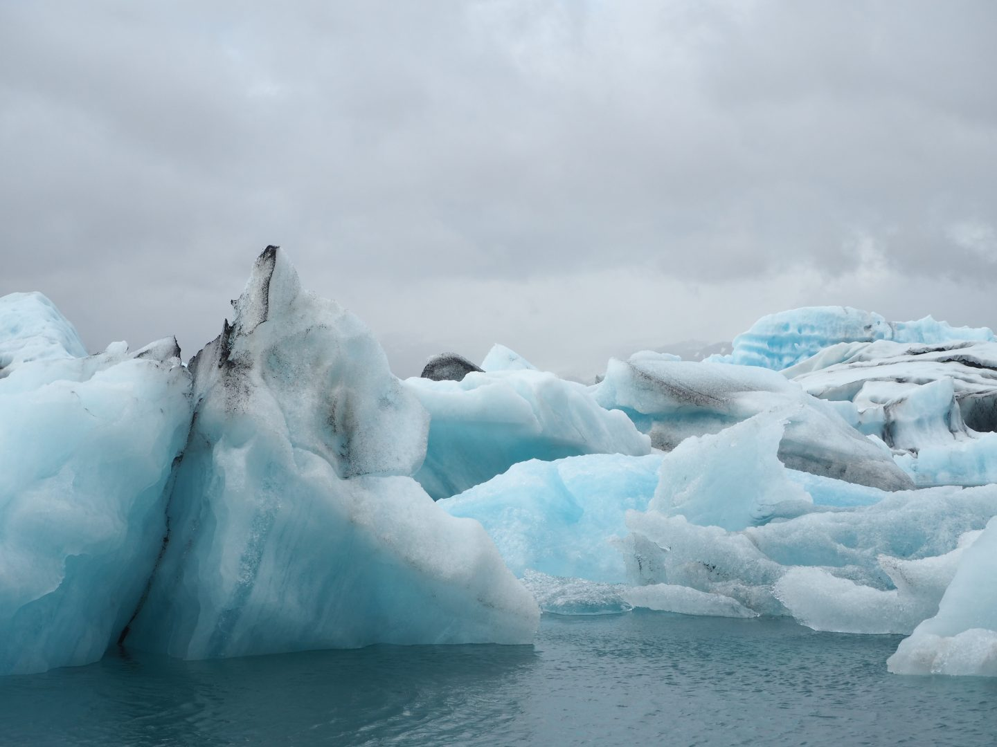 need to save the icebergs