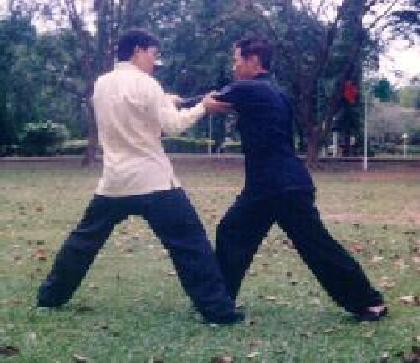 Taijiquan combat