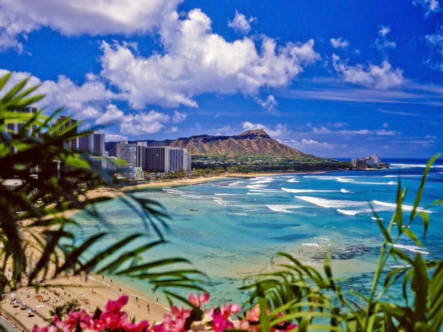 トレーニングをするとハワイに行けます!