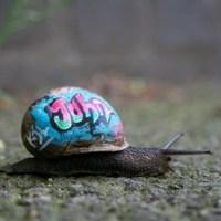 """slinkachu: """"inner city snail""""."""