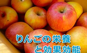 りんごの栄養成分と効果効能。皮が大事?風邪にも効く?