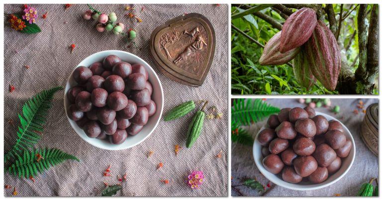 Pure Homemade Chocolates and Cocoa Fruits