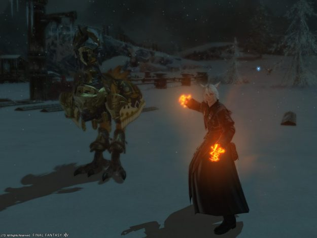 Rakuno and his chocobo ready for battle