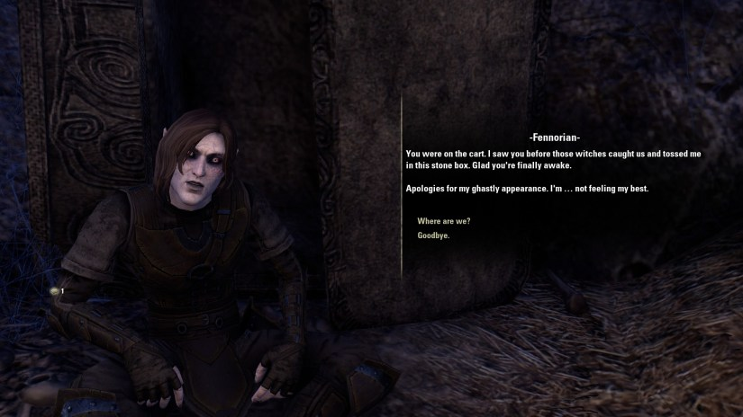 Talking to a NPC called Fennorian about how we were captured by witches while entering Skyrim.