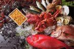 ふるさと納税で美味しい魚をゲット!2017年のおすすめ納税先は?